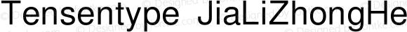 Tensentype JiaLiZhongHeiTW Regular Version  1.00