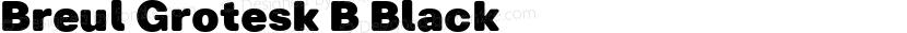 Breul Grotesk B Black ☞ Preview Image