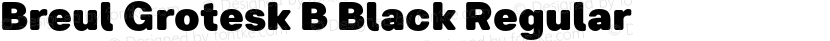 Breul Grotesk B Black Regular Preview Image