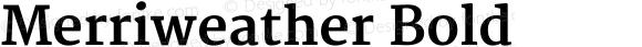 Merriweather Bold