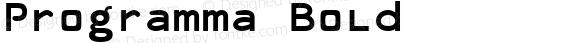 Programma Bold preview image
