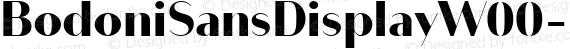 BodoniSansDisplayW00-Black Regular preview image