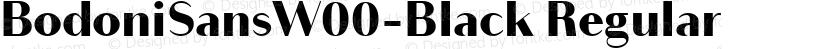 BodoniSansW00-Black Regular Preview Image