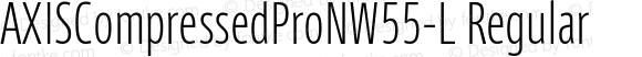AXISCompressedProNW55-L Regular