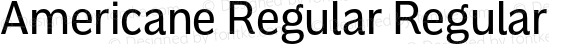 Americane Regular Regular Version 1.000
