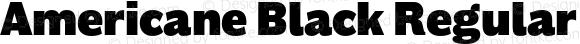 Americane Black Regular Version 1.000