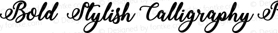 Bold  Stylish Calligraphy Regular preview image
