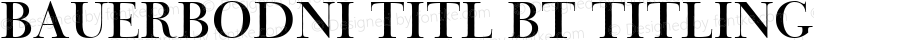 BauerBodni Titl BT Titling mfgpctt-v1.59 Friday, March 12, 1993 9:41:39 am (EST)