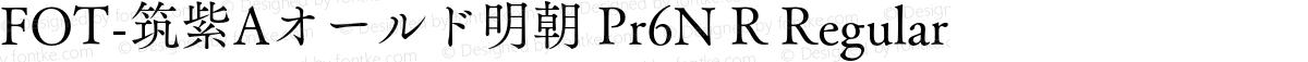 FOT-筑紫Aオールド明朝 Pr6N R Regular
