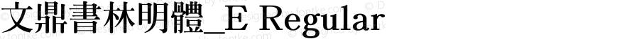文鼎書林明體_E Regular Version 2.82
