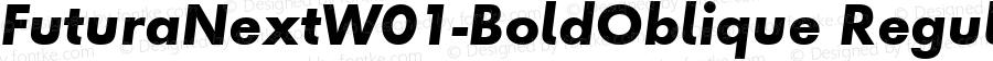 Futura Next W01 Bold Oblique