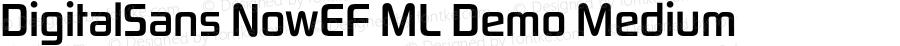 DigitalSans NowEF ML Demo MediumCon