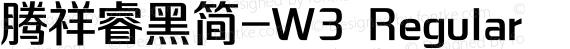 腾祥睿黑简-W3 Regular preview image