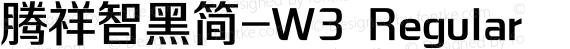腾祥智黑简-W3 Regular preview image
