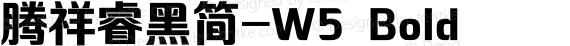 腾祥睿黑简-W5 Bold preview image