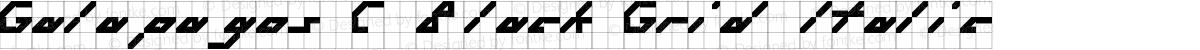 Galapagos C Black Grid Italic