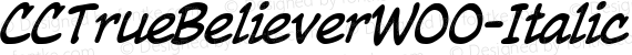 CCTrueBelieverW00-Italic Regular preview image