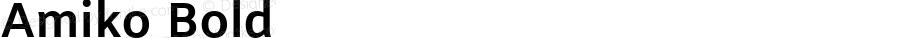 Amiko Bold Version 1.000; ttfautohint (v1.4.1)