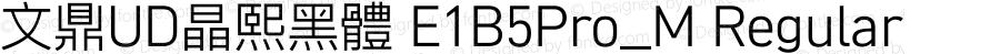 文鼎UD晶熙黑體 E1B5Pro_M Regular Version 1.00