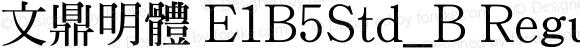 文鼎明體 E1B5Std_B Regular Version 1.00