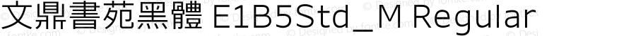 文鼎書苑黑體 E1B5Std_M Regular Version 1.10