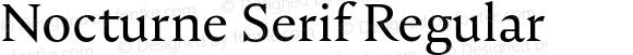 Nocturne Serif Regular