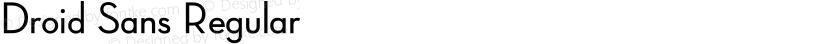 Droid Sans Regular Preview Image