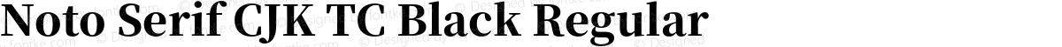 Noto Serif CJK TC Black Regular