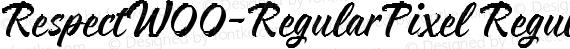 RespectW00-RegularPixel Regular preview image