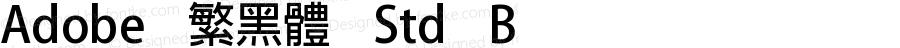 Adobe 繁黑體 Std B