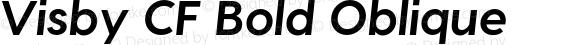 Visby CF Bold Oblique