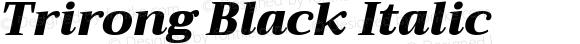 Trirong Black Italic