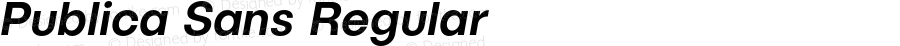 PublicaSans-MediumItalic