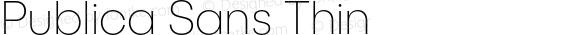 PublicaSans-Thin