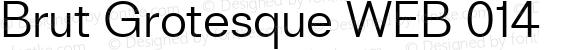 Brut Grotesque WEB 014 Version 1.001;PS 1.1;hotconv 1.0.88;makeotf.lib2.5.647800