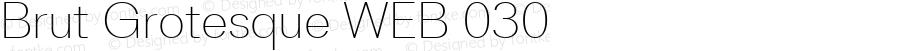 Brut Grotesque WEB 030 Version 1.001;PS 1.1;hotconv 1.0.88;makeotf.lib2.5.647800