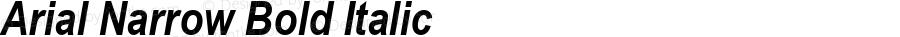 Arial Narrow Bold Italic