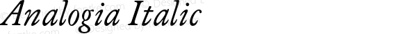 Analogia Italic Version 1.000;com.myfonts.easy.george-tulloch.analogia.italic.wfkit2.version.4EFP