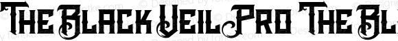 The Black Veil Pro The Black Veil Pro