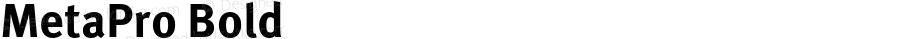 MetaPro Bold Version 7.504; 2005