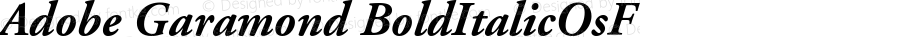 Adobe Garamond Bold Italic Oldstyle Figures