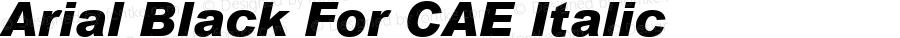 Arial Black For CAE Italic Version 1.00