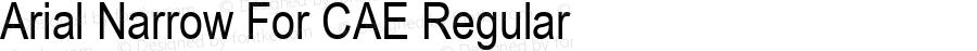 Arial Narrow For CAE Regular Version 1.00