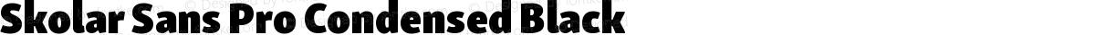 Skolar Sans Pro Condensed Black