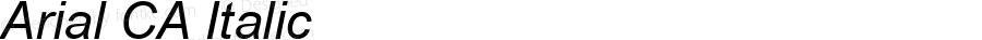 Arial CA Italic MS core font:V1.00
