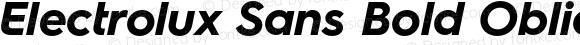 Electrolux Sans Bold Oblique