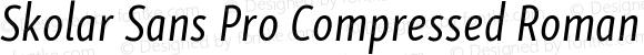 Skolar Sans Pro Compressed Roman Italic