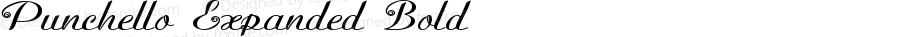 Punchello-ExpandedBold