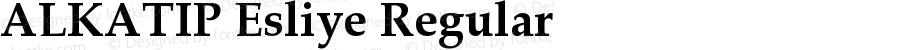 ALKATIP Esliye Regular Version 6.00 November 5, 2016