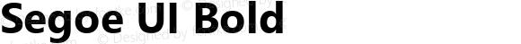 Segoe UI Bold
